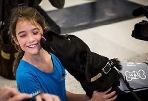 Hunde skal afhjælpe lufthavnsstress