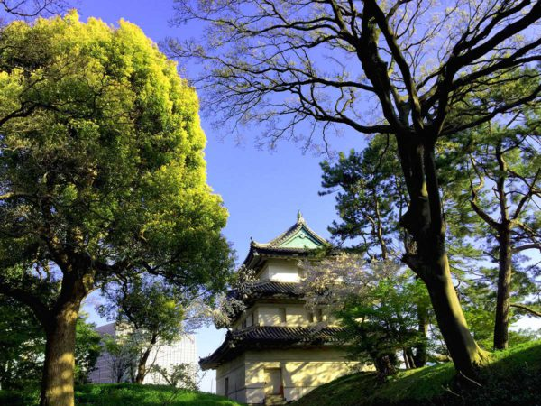 Kejserens Palads i Tokyo (foto: Kenneth Karskov)